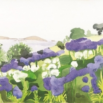 Juliet's Garden Isles of Scilly